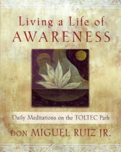 Readers are invited on a six-month journey of daily lessons with Ruiz that are designed to inspire, nourish and enlighten adherents as they travel along the Toltec path.