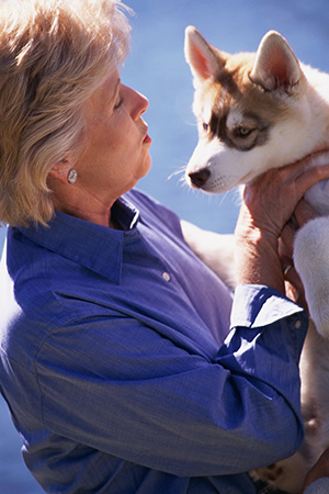 Shouldn't animal owners have the right to seek alternative healthcare and wellness therapies from non-veterinarians? The Arizona Alliance for Animal Owners' Rights, Inc. (AZAAOR) not only believes we should have these rights, but was formed to lobby for legislative change to ensure them.