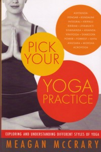 This book describes the most prominent yoga styles in depth, including teaching methodology, elements of practice, philosophical and spiritual underpinnings, class structure, physical exertion and personal attention.