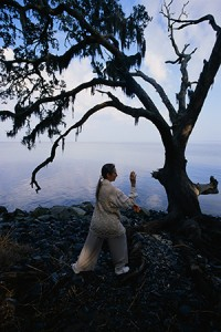 ZhiNeng QiGong has become the most practiced qigong system in the world. It is calculated that more than 13 million people are practicing ZhiNeng QiGong around the globe.