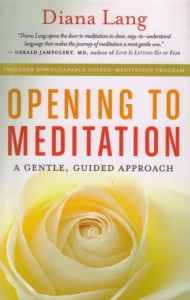 The book includes a downloadable guided meditation program.
